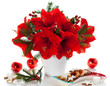 Christmas arrangement of amaryllis