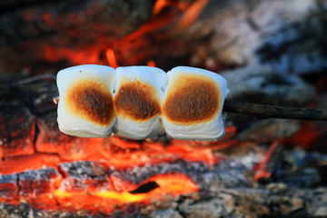 marshmallows roasting on aopen fire