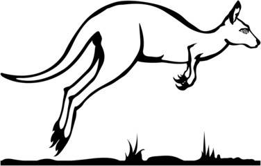 Kangaroo black and white vector
