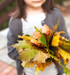 Little girl holding colorful bouquet of autumn leaves