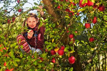 girl in the apple tree