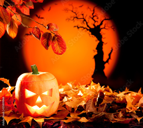 Halloween orange pumpkin on autumn leaves