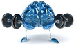 Cerveau et poids