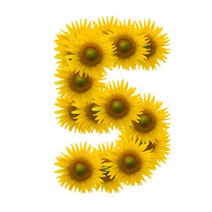5,Sun flower alphabet isolated on white