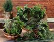 Composition d'herbes
