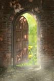 Fototapety Door to new world