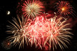 Leinwandbild Motiv Feuerblumen