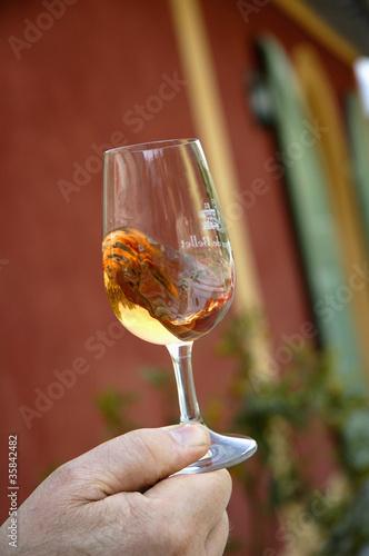 verre de rosé à déguster