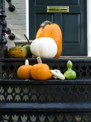 Halloween ready house patio