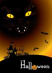 Background -- black cat