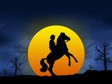 Cowboy taming is horse at sunset poster