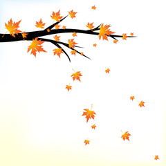 Autumn branch with falling leaves