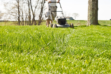 Man in shorts pushing a walk behind mower