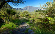 Sentier dans le Cirque de Mafate - La Réunion