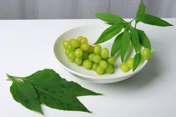 Weintrauben in einer Schale