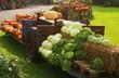 Gemüse auf einem Anhänger, bei einem Bauernhof