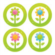 set of 4 colorful flowers buttons