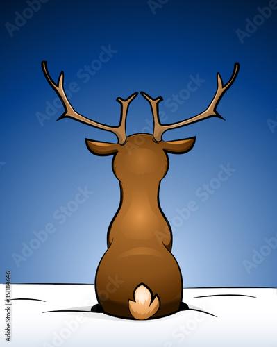 Rentier im Schnee sitzend