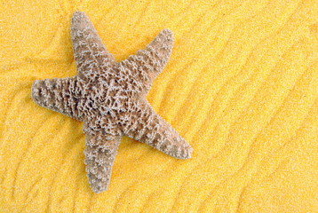 starfish over yellow sand, useful as background