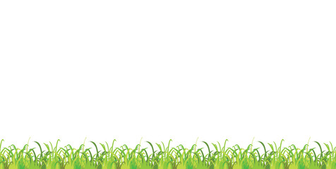 Seamless spring green grass vector horizontal pattern