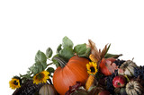 Mixed fruits and pumpkins in the fall