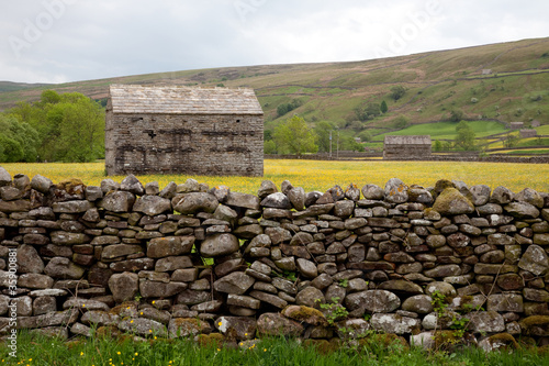 Barns & wild flower meadows, Muker, Swaledale, Yorkshire Dales