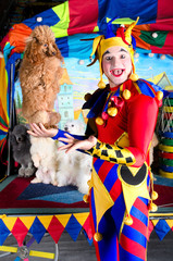 Wide smiling clown holding poodle on his palm