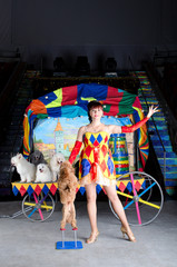 Woman shows trick 'standing dog'. Circus arena