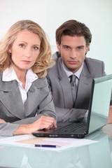business collaborators