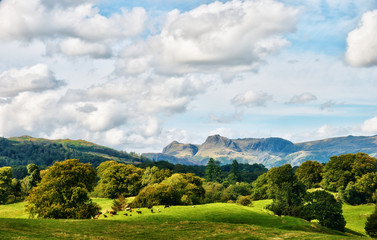 The Langdale Pikes viewed from Latterbarrow