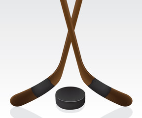 Hockey puck and stick