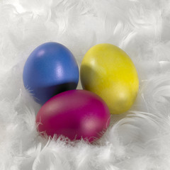 colored Easter eggs and down feathers