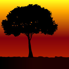 tree black vector silhouette