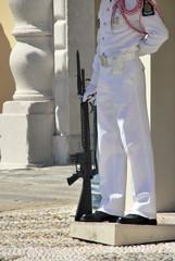 Monaco sentry