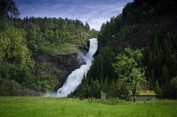 Idyllische Weidelandschaft in Norwegen