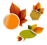 Fototapety Set of vector autumn discount tickets, labels, stamps, stickers