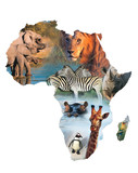 Fototapety africa collage
