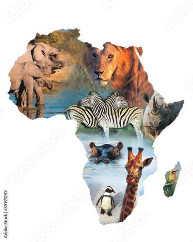 africa collage