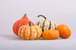 Five colourfull pumpkins on a isolated background
