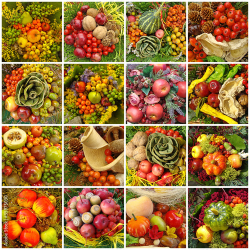 autumnal harvest collage