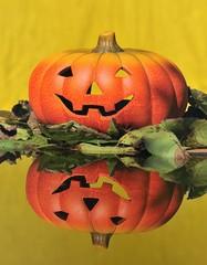 Calabaza de halloween con fodo amarillo.