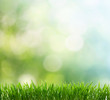 spring background - 35984804