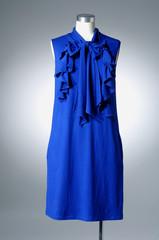 fashion blue cloth on a dummy