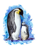 penguin mather and her child