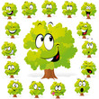 tree with many expressions