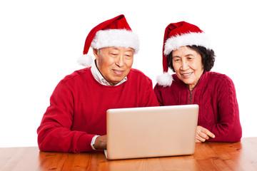 Senior Asian grandparents using computer