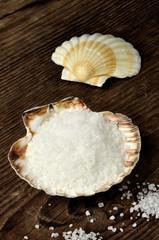 Coarse sea salt in scallop shell