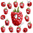 raspberry with many expressions