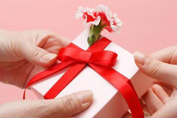 カーネーションと贈り物