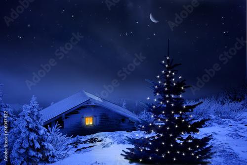 Naklejka Weihnachtswald